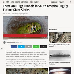 There Are Huge Tunnels in South America Dug By Extinct Giants Sloths