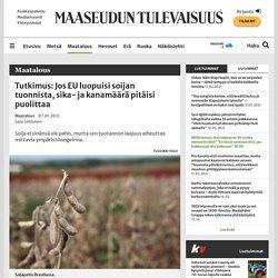 Tutkimus: Jos EU luopuisi soijan tuonnista, sika- ja kanamäärä pitäisi puolittaa - Maatalous
