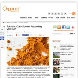 Turmeric: Curry Spice or Astounding Cure-All?