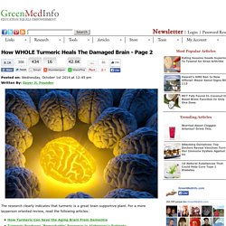 How WHOLE Turmeric Heals The Damaged Brain - Page 2