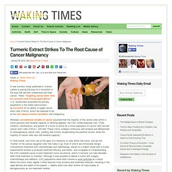 Turmeric Extract Strikes To The Root Cause of Cancer Malignancy
