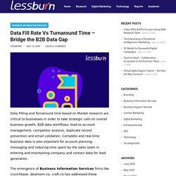 Data Fill Rate Vs Turnaround Time – Bridge the B2B Data Gap – lessburn