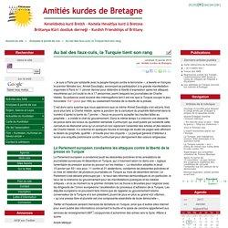 Au bal des faux-culs, la Turquie tient son rang - Amitiés kurdes de Bretagne