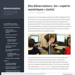 Des élèves tuteurs : les «experts numériques (suite)