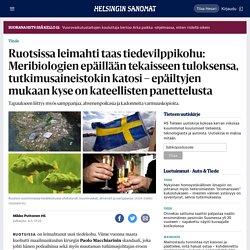 Ruotsissa leimahti taas tiedevilppikohu: Meribiologien epäillään tekaisseen tuloksensa, tutkimusaineistokin katosi – epäiltyjen mukaan kyse on kateellisten panettelusta - Tiede - HS.fi