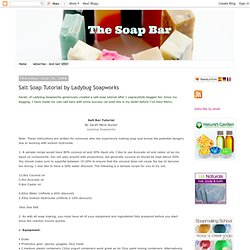 The Soap Bar: Salt Soap Tutorial by Ladybug Soapworks