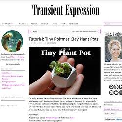 Tiny Plant Pots