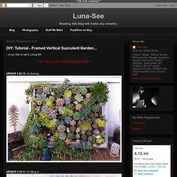 DIY: Tutorial - Framed Vertical Succulent Garden...