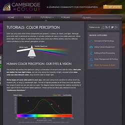 Tutorials – Color Perception