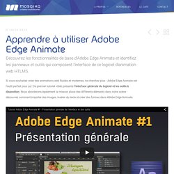 Tutoriel Adobe Edge Animate : prendre en main l'interface du logiciel