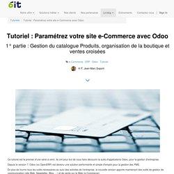 6 IT - Tutoriel : Paramétrez votre site e-Commerce avec Odoo