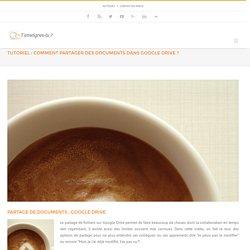 Tutoriel : le partage de documents avec google doc