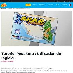 Tutoriel Pepakura : Utilisation du logiciel – Black Owl Studio