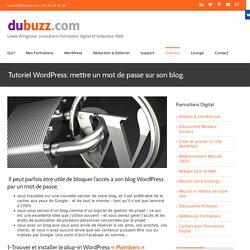 Tutoriel Wordpress: mettre un mot de passe sur son blog - dubuzz.com