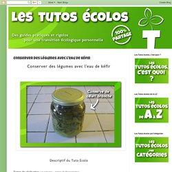 Les Tutos Ecolos: Conserver des légumes avec l'eau de kéfir