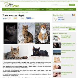 Tutte le razze di gatti