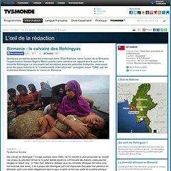 Birmanie : le calvaire des Rohingyas