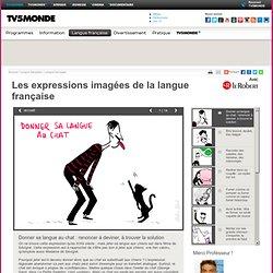 TV5MONDE- Les expressions imagées de la langue<br/> française- Donner sa langue au chat : renoncer à deviner, à trouver la solution