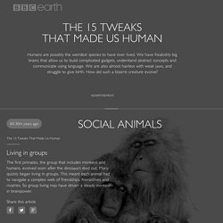 The 15 Tweaks That Made Us Human