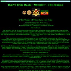 Twelve Tribe Rasta ~Overview - The Positive