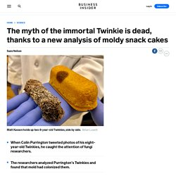 Scientists Analysed Twinkies Kept in a Basement For 8 Years, And Got a Surprise