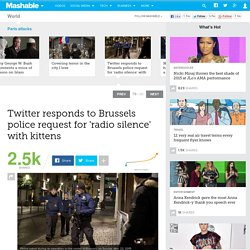 Twitter responds to Brussels police request for 'radio silence' with kittens
