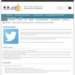 TRAAM - Twitter double-classe Gosse/Vilar - Synthèse du projet TRAAM