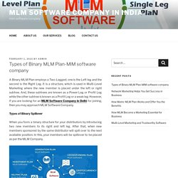 Types of Binary MLM Plan-MlM software company