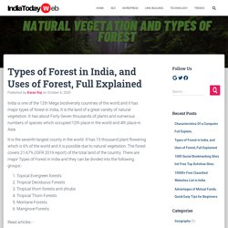 Types of Forest in India, and Uses of Forests, Full Explained