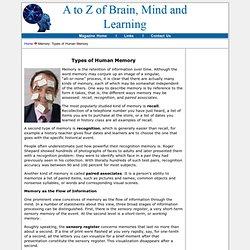Types of Human Memory