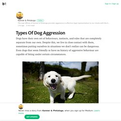 Types Of Dog Aggression – Medium