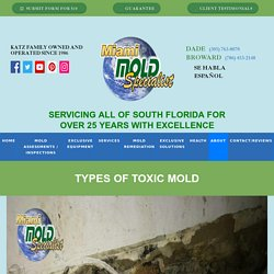 Types of Toxic Mold