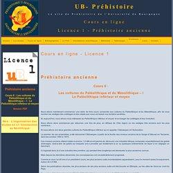 UB-Préhistoire - L3 - Cours en ligne-Neo