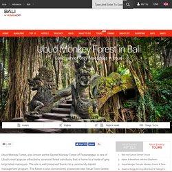 Ubud Monkey Forest in Bali - Bali Magazine