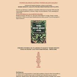 Łukasz Łuczaj - Dzikie rosliny jadalne