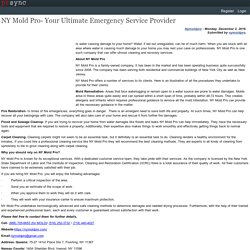 NY Mold Pro- Your Ultimate Emergency Service Provider