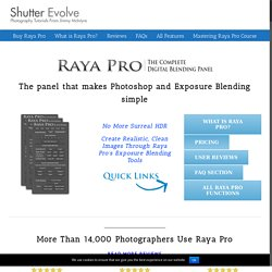 Raya Pro - The Ultimate Digital Blending Workflow Panel For Photoshop - Shutter...Evolve
