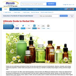 Ultimate Guide to Herbal Oils