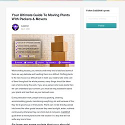 Your Ultimate Guide To Moving Plants With Packers & Movers - Call2Shift