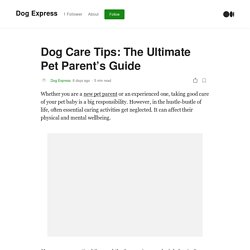 Dog Care Tips: The Ultimate Pet Parent's Guide