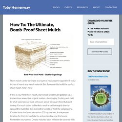 How To: The Ultimate, Bomb-Proof Sheet Mulch - Toby Hemenway