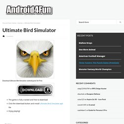 Ultimate Bird Simulator Android APK Free Download - Android4Fun