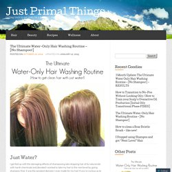 The Ultimate Water-Only Hair Washing Routine – [No Shampoo!] « Just Primal Things