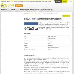 TinEye - umgekehrte Bildsuchmaschine - EduGroup