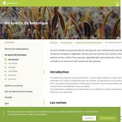 Botanique, connaissances de bases – Tela botanica