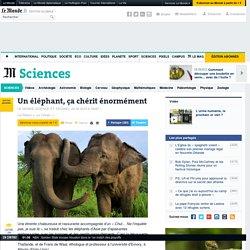 Un éléphant, ça chérit énormément