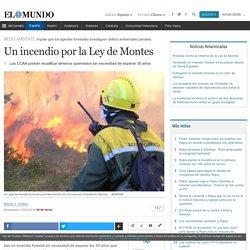 Un incendio por la Ley de Montes