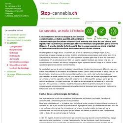 Un point sur le trafic de cannabis dans le monde