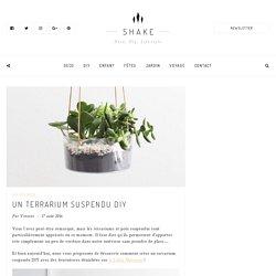 Un terrarium suspendu DIY
