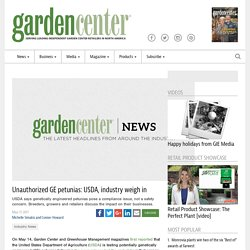GARDENCENTERMAG 17/05/17 Unauthorized GE petunias: USDA, industry weigh in
